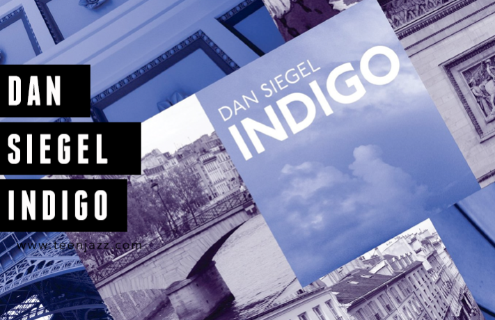 Review of Indigo by Dan Siegel | Teen Jazz